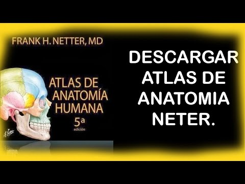 descargar-atlas-de-anatomía-humana-|-pdf-|-gratis-|