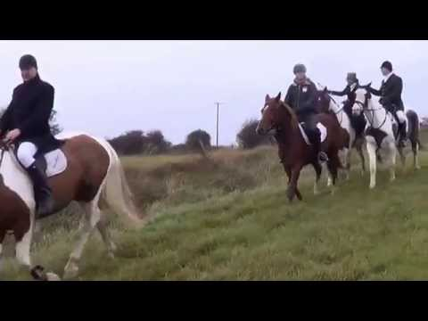 Hunting in Ireland with the Grallagh Harriers