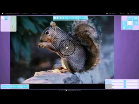 Smoothie-3D: squirrel modeling