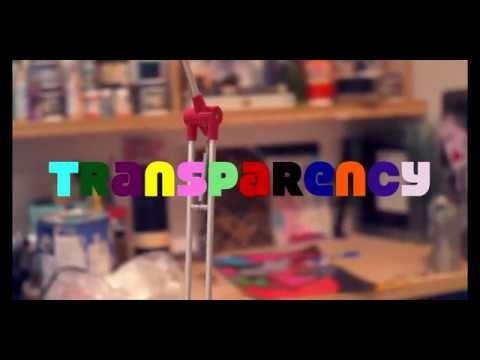 Macy Todd - Transparency