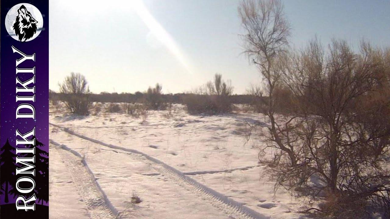Зимняя охота на зайца.  (1-3 декабря 2016г)