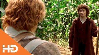 На кукурузном поле ✶ Властелин колец: Братство кольца (2001)