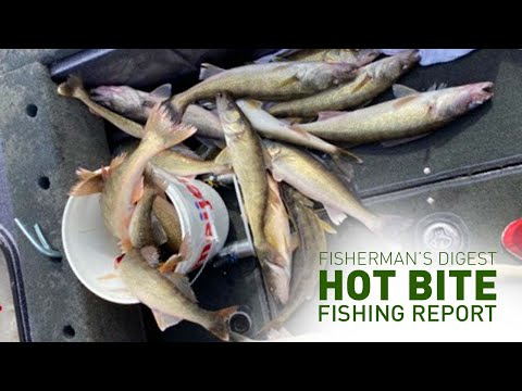 Walleye Fishing On Lake Erie & More!!! - Hot Bite Fishing Report - May 6th 2020