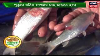 অন্নদাতা | পুকুরে মাছ চাষের খুঁটিনাটি