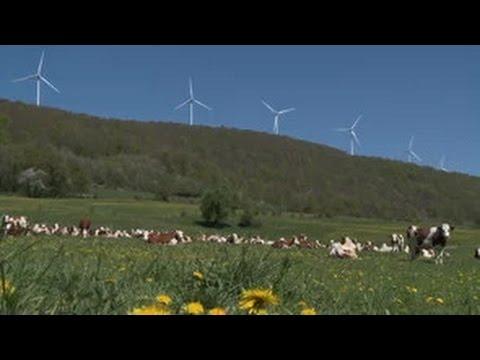 Energie eolienne, l'hystérie des brasseurs de vent