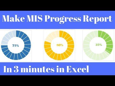 MIS Report in Excel Progress Chart