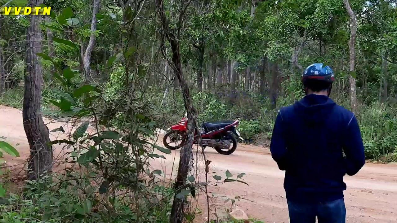 RỪNG BƯNG THỊ | Khu Bảo Tồn Thiên Nhiên Tà Cú, Hàm Thuận Nam, Bình Thuận | VVDTN