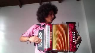 Blurred Lines (Robin Thicke ft. T.I., Pharrell) - Cover Accordion - Mulett