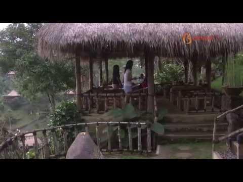 Bali AM:PM 37.3 - Basanta Agro Organic
