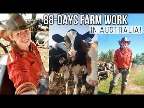 WORKING ON A FARM IN AUSTRALIA! | BACKPACKER JOBS FOR 88-DAYS!