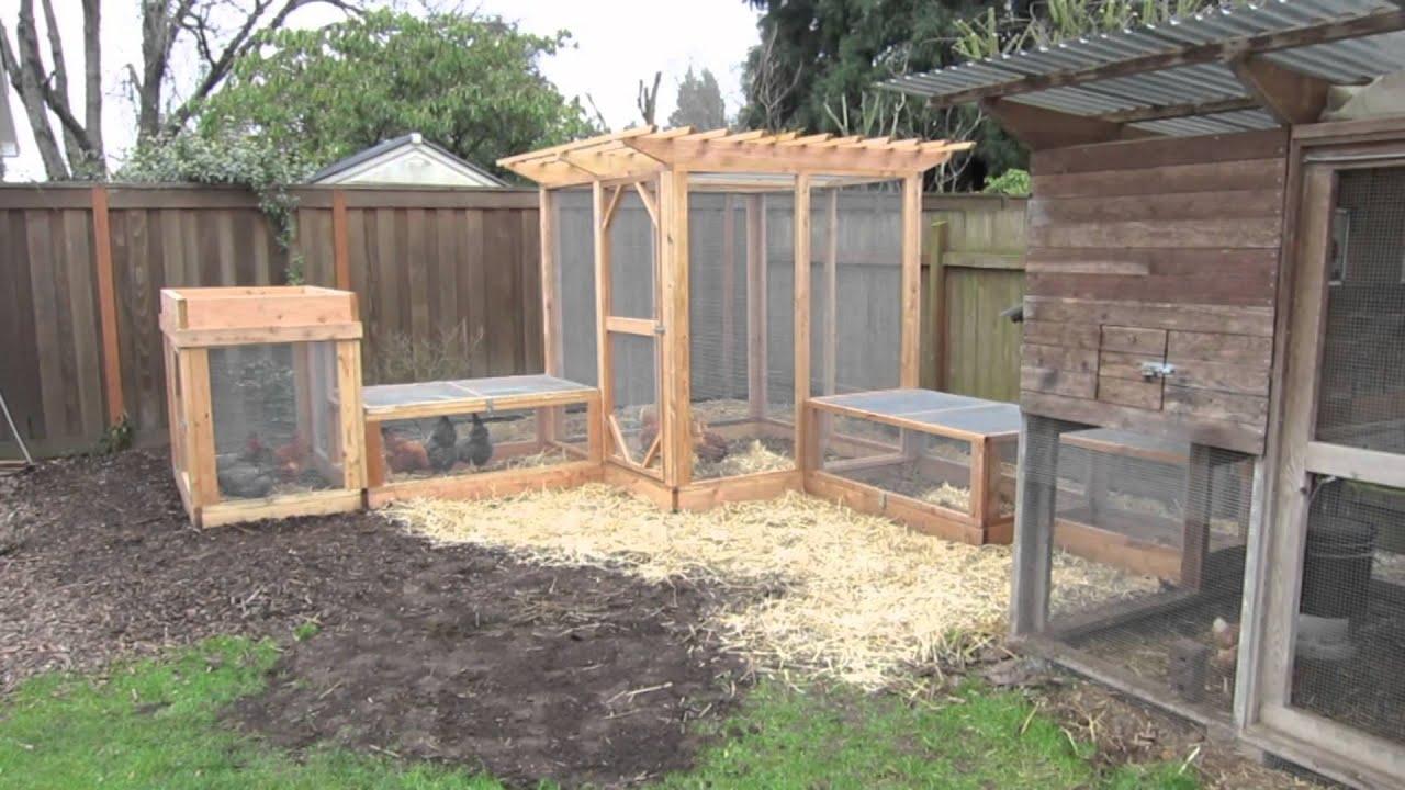 Chickens In The Garden Run. The Garden Coop