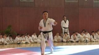 """Pumse Superior  """"Cheonkwon"""" por el Maestro PARK HYEON SEO cinturón negro 8 Dan Taekwondo"""