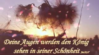 Video Meine liebeslider download MP3, 3GP, MP4, WEBM, AVI, FLV Agustus 2017