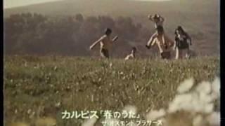 The Osmond Family, Calpis CM  ( オズモンズ カルピスCM ) オズモンド 検索動画 21