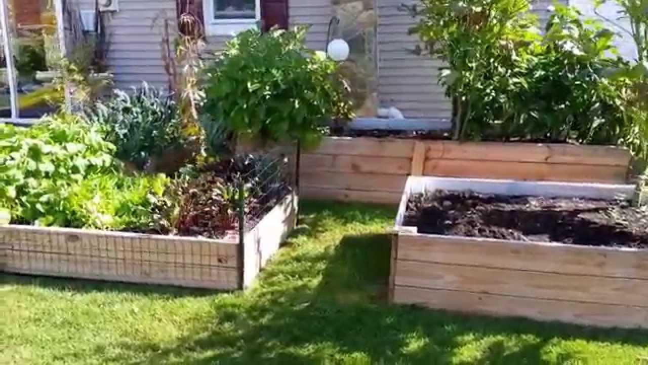 Horta em casa nos Estados Unidos - YouTube