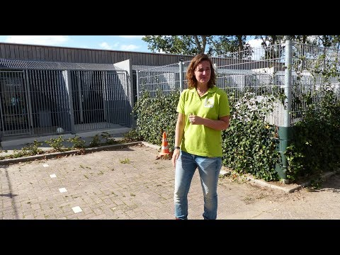Open dag Dierenopvangcentrum / Spijkenisse 2018