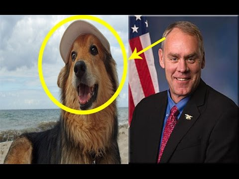 Secretary Zinke  l  plays with dogs inside the ministry ??