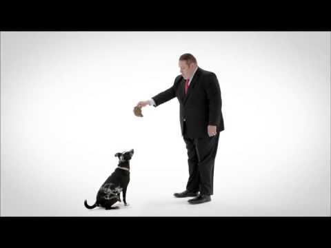"""Dog"" TV:15 Bank Version"