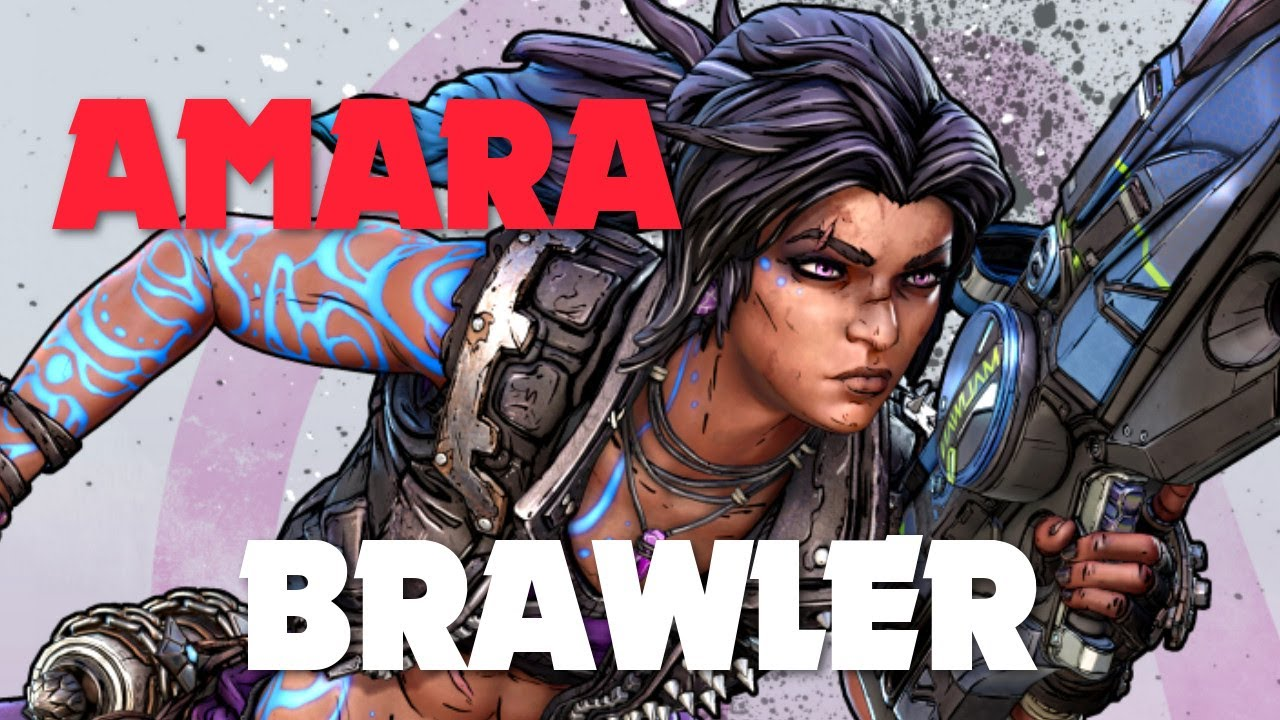 Borderlands 3 - Best Amara Gear Combo vs Tyreen (Brawler Ward and Face Puncher) - YouTube