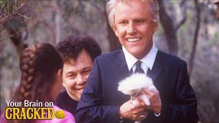The Shockingly Bad Christian Moטie Starring Gary Busey As A Pomeranian | YBOC