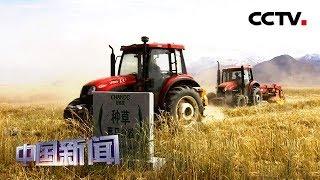 [中国新闻] 国务院扶贫办:六大举措打赢脱贫攻坚战 | CCTV中文国际
