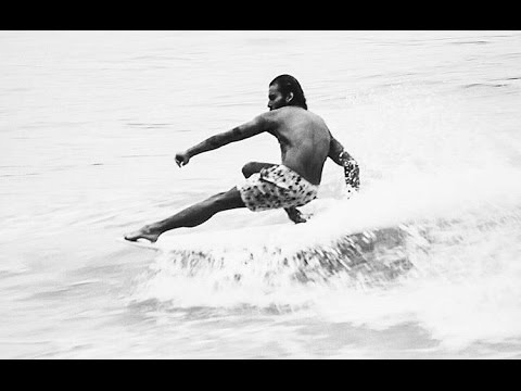 Single Fin Barva Model design Andre Torelly - Surf de Monoquilha por Rafael Guedes