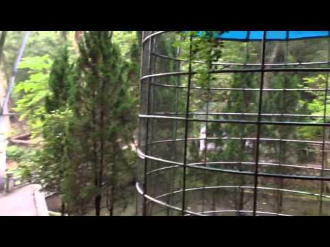 Guangdong Hot Spring Resort Park