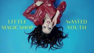 Смотреть клип Little Magic Shop - Wasted Youth