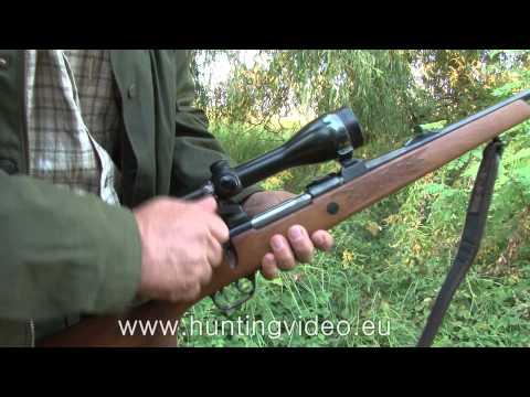 Red Stag Hunting In Hungary Jánosháza HD