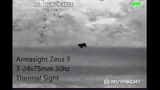 17 lb Bobcat Taken with 6.5 Grendel, Thermal Predator Hunt