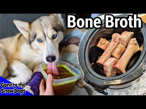 How To Make Beef Bone Broth For Dogs | DIY Dog Treats 112