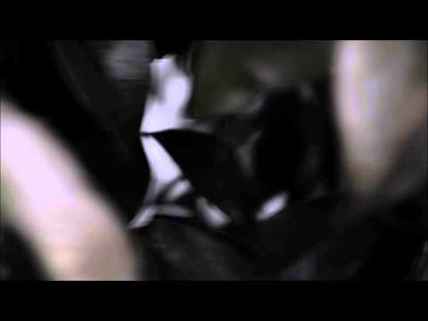 ӇῘDE. ℳøøи - Casted Shadows