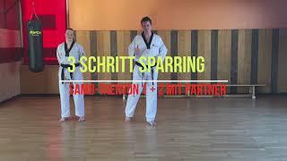 Taekwondo Prüfungsprogramm weissgelb