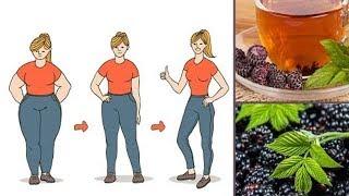 Możesz Schudnąć do 2 Kilogramów Tygodniowo Dzięki Temu Przepisowi na Herbatę   Jak Schudnąć?