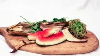 Food Waste Releasing Methane - 5 Day Timelapse
