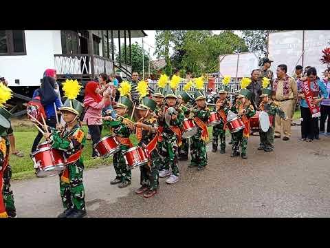 Bupati Sanggau Paolus Hadi Disambut Drum Band Cilik DiKampung Sentana