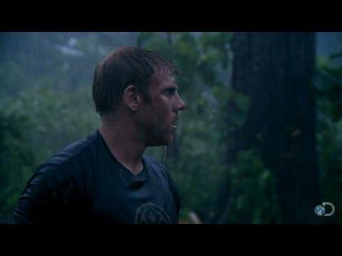 Pouring Down Rain | Jungle Gold