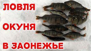 Ловля окуня в Заонежье Трудовая вышла рыбалка Зимняя рыбалка в Карелии 2021