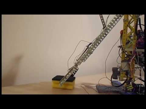 Google Science Fair 2015: Chirila Radu- Robotic Arm