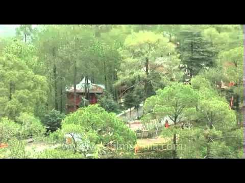 Resort above Shimla, in the Himachal Pradesh hills