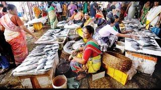 FISH Market - DAHISAR   #Dahisarfishmarket #Mumbaifishmarket