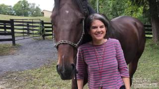 how-a-rescued-racehorse-met-his-new-mom