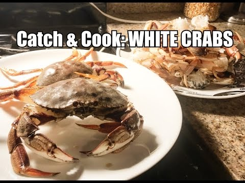 Catch And Cook Ep 9: WHITE CRABS!?