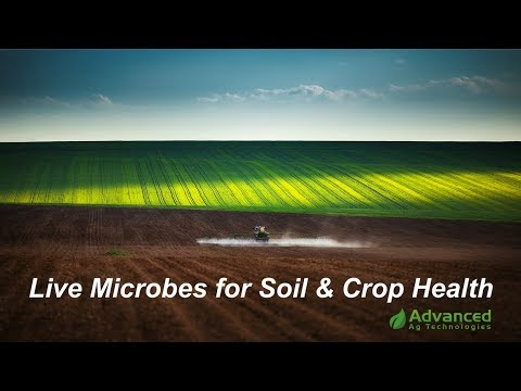 Advanced Ag - Microbes for Soil & Crop Health