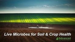 Advanced Ag - Microbes for Soil & Crop Health