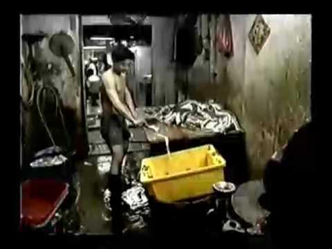Kowloon Walled City documentary (Part 1/4)