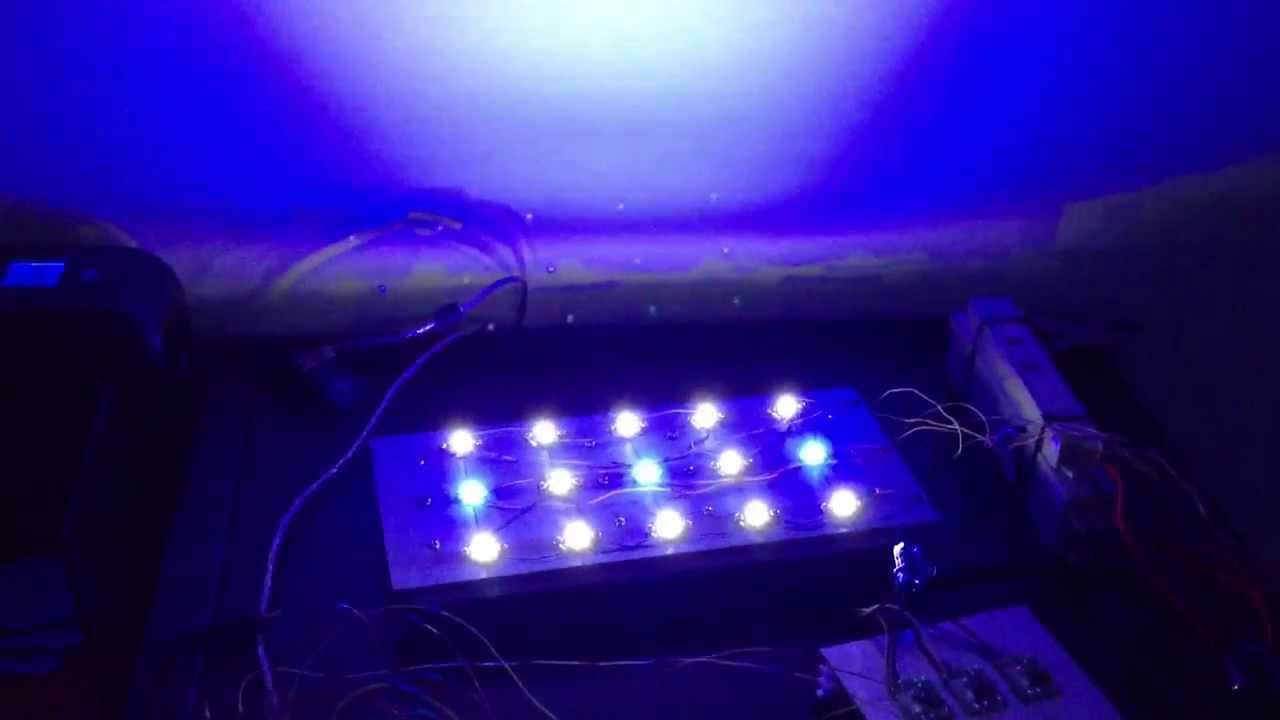 Plafoniera led cree acquario marino youtube for Plafoniera led acquario