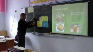 Урок географии для детей с ОВЗ. Учитель Марисова М.С.