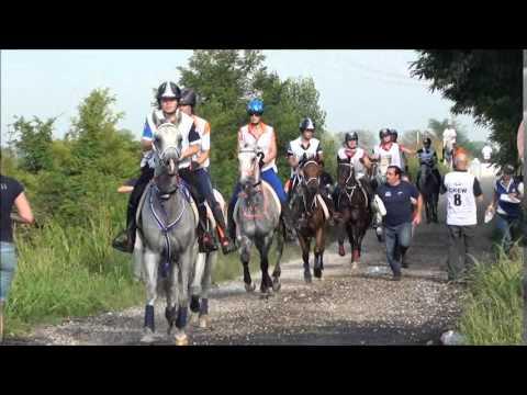FEI European Championship YR & J Endurance Verona 2014