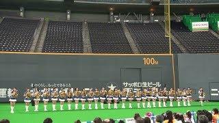 2019年9月15日、札幌ドームでの北海道日本ハムファイターズの試合後に行われた、2019ファイターズガールの2019年ラストステージです ※著作権の都...
